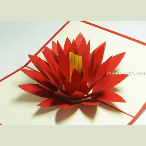 Pop up flower cards 12